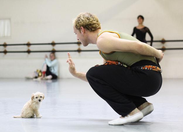 gaston-cachorro-grupo=ballet-san-diego-03