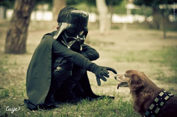 han-solo-chewbacca-fotografia-crianca-cachorro-06