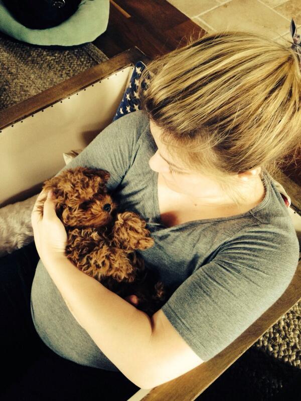 Kelly Clarkson com o filhote Wyatt. (Foto: Reprodução / Twitter)
