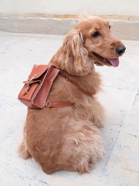 Mochila para cachorro. (Foto: Divulgação / Etsy)