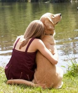 Estudo mostra que a relação entre cães e tutores é bem próxima. (Foto: Reprodução / Google)