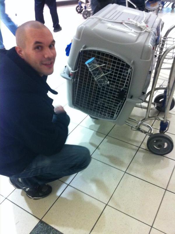 O cão foi levado para o Canadá.  (Foto: Reprodução / Dogster)