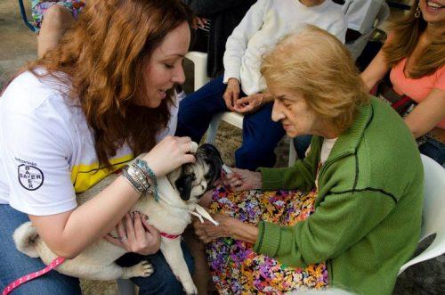 Cão terapeuta. (Foto: Divulgação / Projeto Pêlo Próximo)
