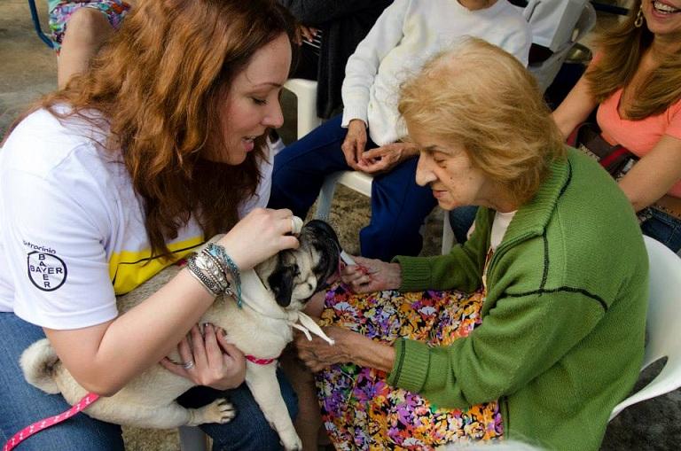 O Projeto Pêlo Próximo promove a interação entre animais e pessoas. (Foto: Divulgação)