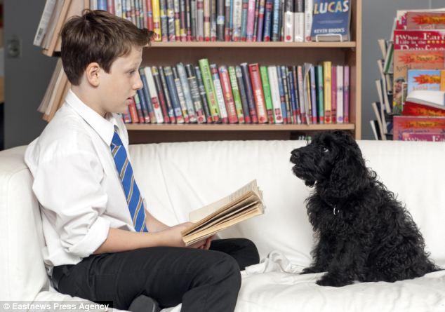 A cachorra Flossie ajuda as crianças nas aulas de leitura. (Foto: Reprodução / Daily Mail)