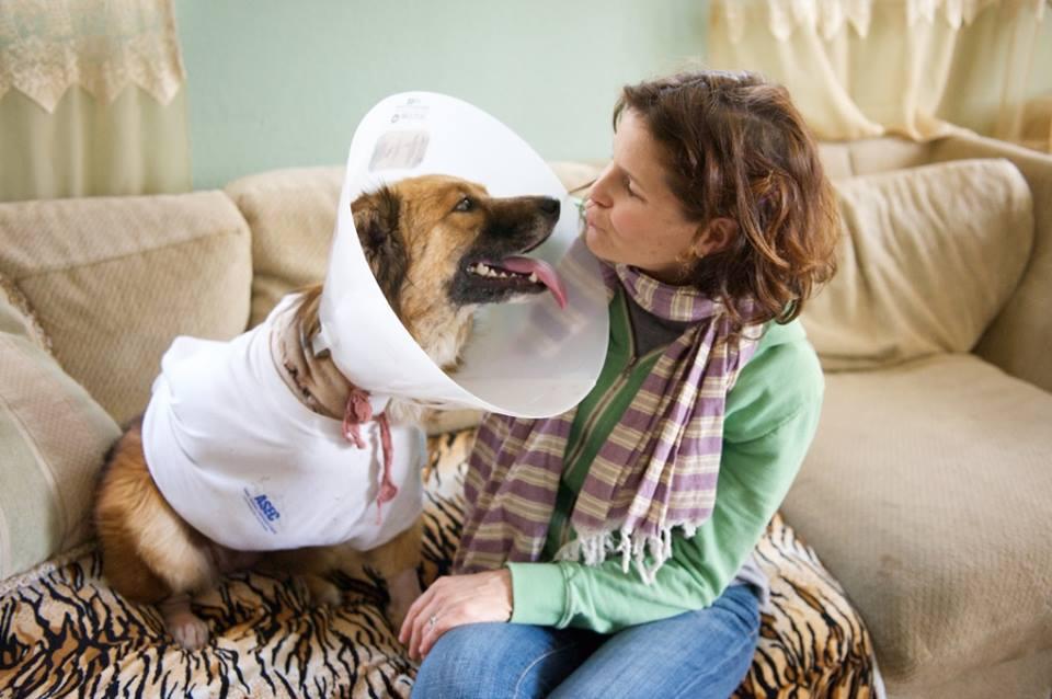 A cachorra com Kerry Lowe Armstrong, membro do abrigo North Central Shelter. (Foto: Reprodução / Facebook)