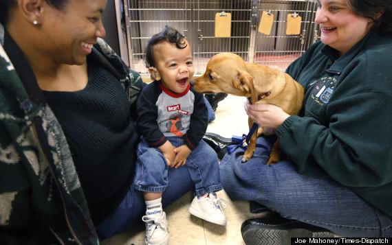 O cachorro Frank com o menino Dylan Lipton-Lesser. (Foto: Reprodução / Huffington Post)