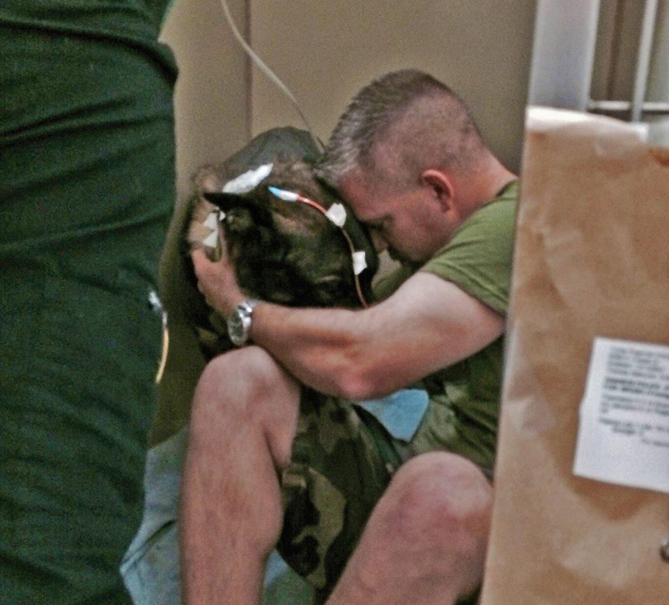 O policial RJ Young dando apoio ao pastor alemão. (Foto: Reprodução / Facebook)