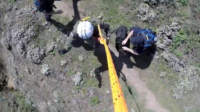 A cadela chegando ao chão em segurança. (Foto: Reprodução / Youtube)