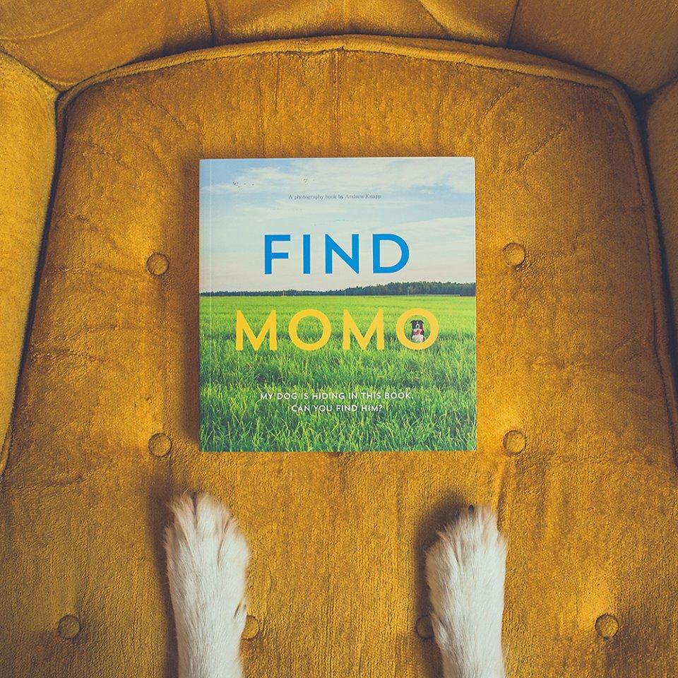 """Livro Find Momo (em português """"Escontre Momo""""). (Foto: Reprodução / Facebook)"""