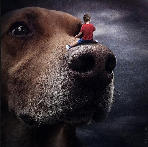 A artista quer ajudar cães abandonados. (Foto: Divulgação / Sarolta Bán)