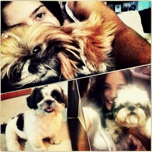 Marley, Kika e Cegueta. (Foto: Reprodução / Instagram)