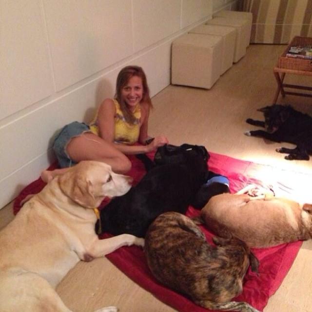 Luisa Mell e seus cachorros. (Foto: Reprodução / Instagram)