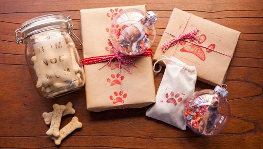 presente-amantes-cachorro