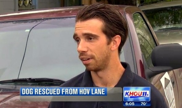 Rickey se arriscou no meio da estrada para salvar cachorra atropelada. Foto: Reprodução / Lifewitdogs