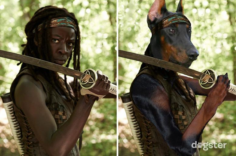 Michonne como um Doberman. (Foto: Reprodução / Nigel Sussman / Dogster)