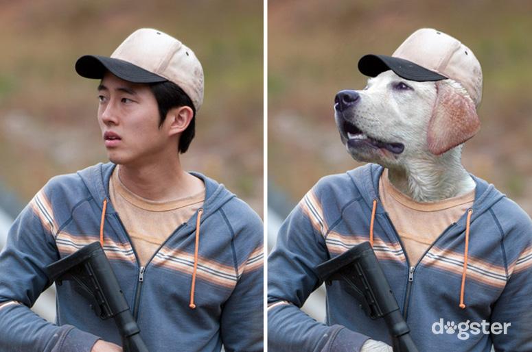Glenn Rhee como um Labrador Retriever. (Foto: Reprodução / Nigel Sussman / Dogster)