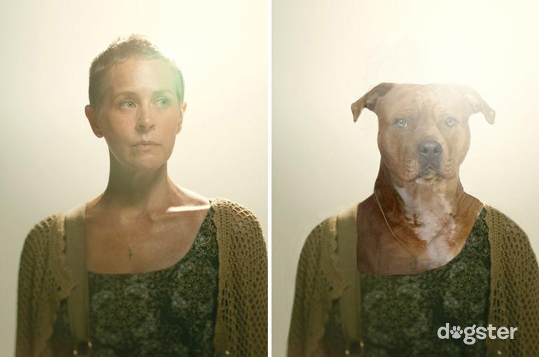 Carol Peletier como um American Staffordshire Terrier. (Foto: Reprodução / Nigel Sussman / Dogster)