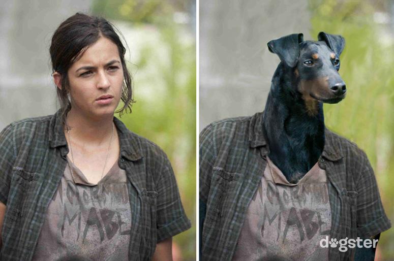 Tara Chambler como um Manchester Terrier. (Foto: Reprodução / Nigel Sussman / Dogster)