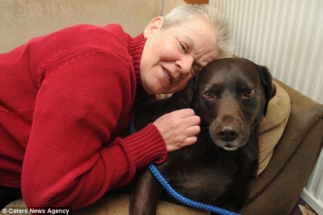A cachorra Judy salvou a vida de sua tutora duas vezes. (Foto: Reprodução / Daily Mail uk)