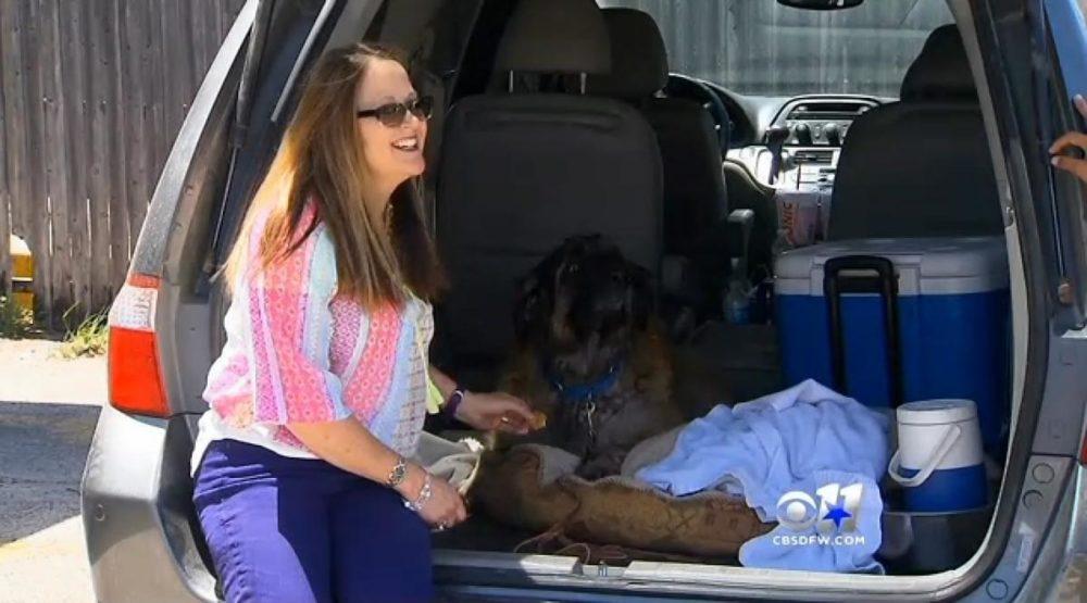 O cão Sid com sua tutora. (Foto: Reprodução / NY Daily News)