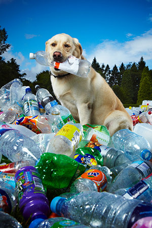 Tubby reciclou 26 mil garrafas em 6 anos. (Foto: Divulgação / Guinness World Records)