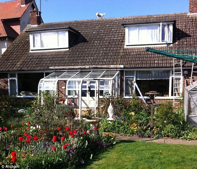 Cachorro sobe no telhado e fica com medo de voltar. (Foto: Reprodução / Daily Mail uk)