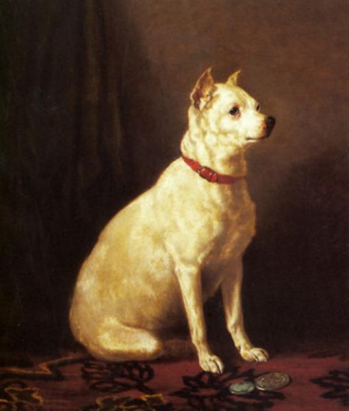 English White Terrier (Foto: Reprodução / Pawnation)