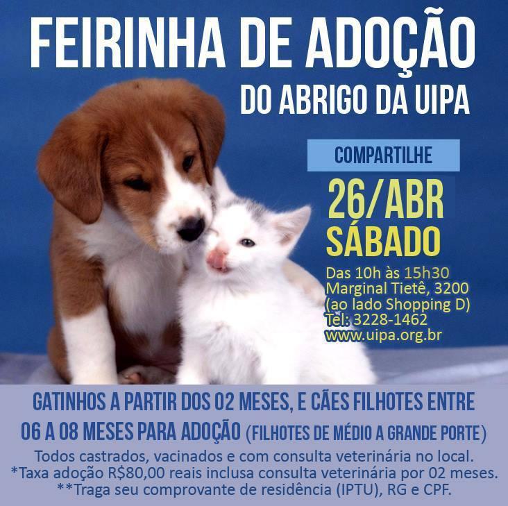 Foto: Divulgação / Facebook / UIPA