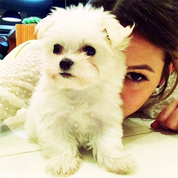 Bruna Marquezine com sua cachorrinha Luna. (Foto: Reprodução / Instagram)