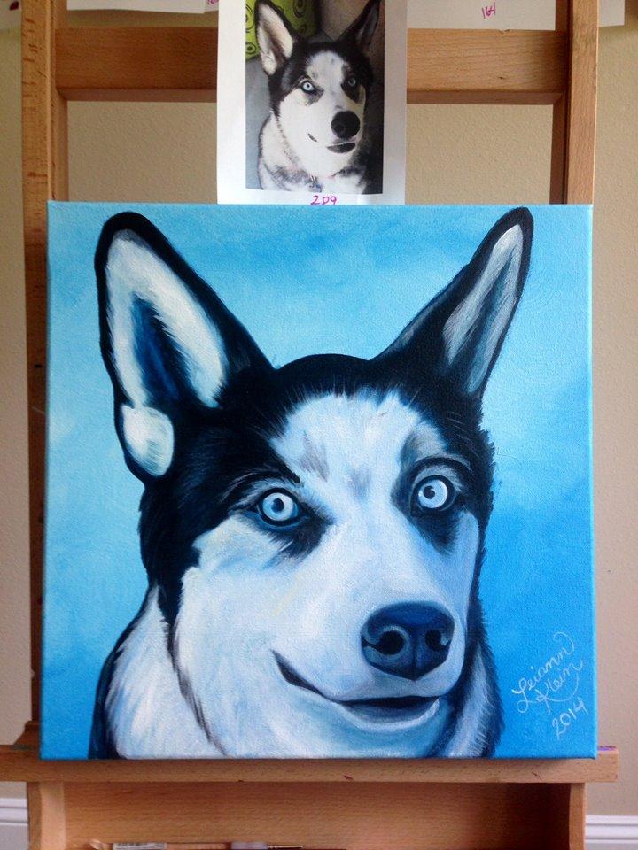 projeto-telas-cachorros-07