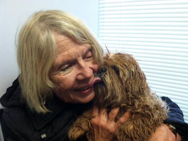 A cachorra saiu ilesa do acidente e recebeu muito carinho de sua tutora. (Foto: Reprodução / Dogster)