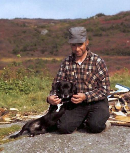 St. John's Water Dog (Foto: Reprodução / Pawnation)