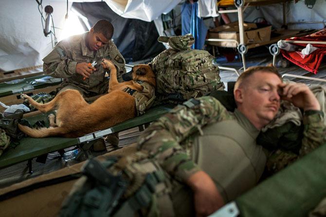 O sargento Bourgeois cortando as unhas de Oopey, antes de uma missão no Afeganistão. Os soldados que têm cães são responsáveis por todas os cuidados que eles precisam. Eles aprendem a fazer ressucitação cardiopulmonar e como lidar com estresse pós-traumático em cachorros. (Foto: Reprodução / Adam Ferguson / National Geographic)
