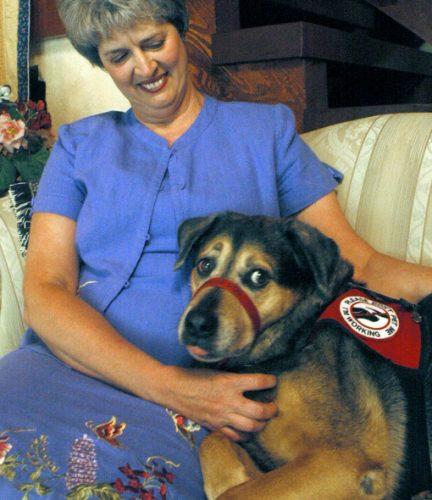 Cão de alerta de convulsão (Foto: Reprodução / Pawnation)