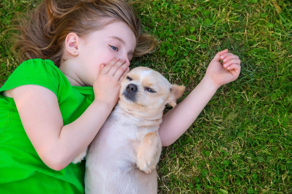Conversar com seu cachorro faz bem a todos. (Foto: Reprodução / Dogster)