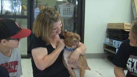 Cindy Koch adotou a pitbull Rosie, ambas são surdas. (Foto: Reprodução / Nebraska TV)