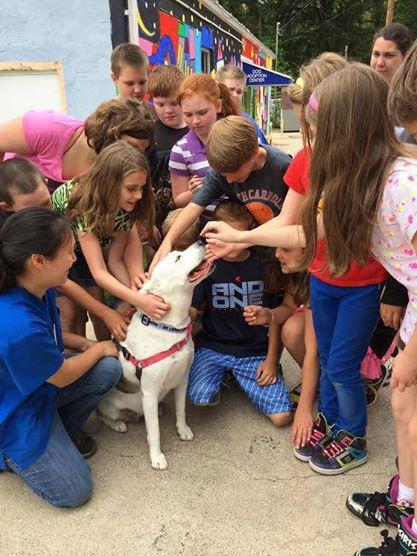 Alunos visitam abrigo de animais que estão ajudando. (Foto Reprodução / Facebook / Baltimore Humane Society)