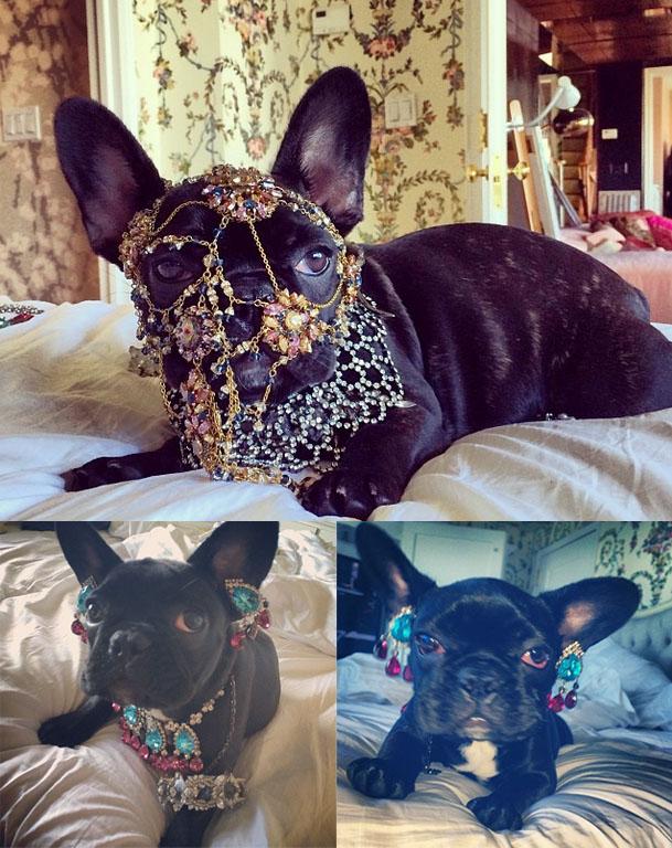 Asia usando os adereços da tutora, Lady Gaga, para fotos. Foto: Reprodução/Instagram