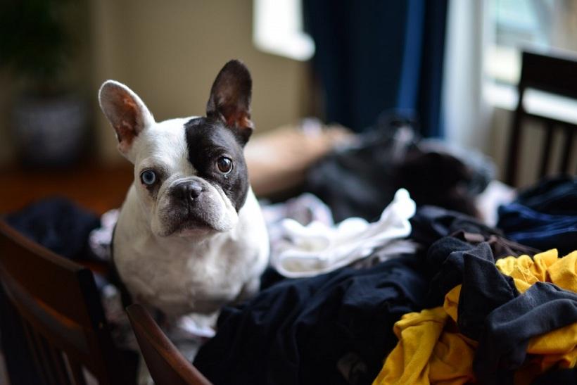 Separando a roupa suja? (Foto: Reprodução / Google)