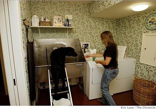 Lavando a roupa no tanque ou procurando um lugar pra se refrescar? (Foto: Reprodução / Google)