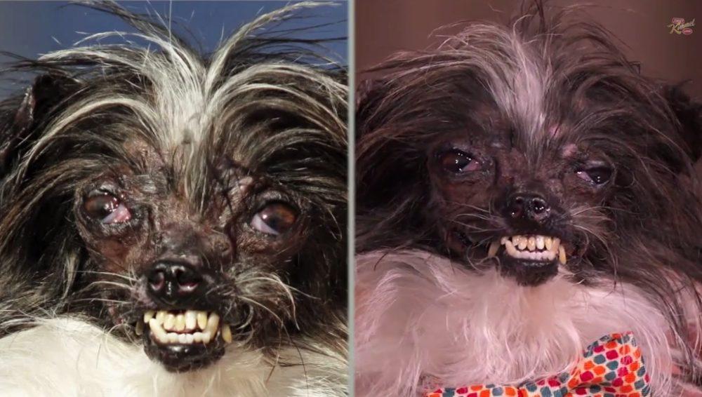 Antes (esquerda) e depois (direita) da transformação; (Foto: Reprodução / Youtube / Jimmy Kimmel Live)