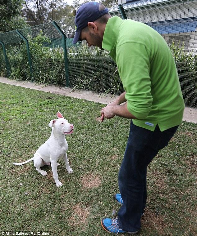 Hurley está aprendendo a linguagem dos sinais com Adam Farrugia. (Foto: Reprodução / Daily Mail UK)
