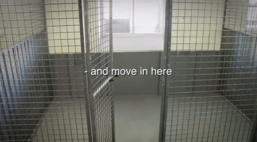 Esse era o local onde o cachorro ficaria no canil. (Foto: Reprodução / Youtube)