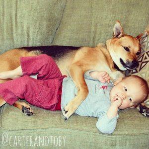 Conviver com cães traz muitos benefícios. (Foto: Reprodução / Instagram)