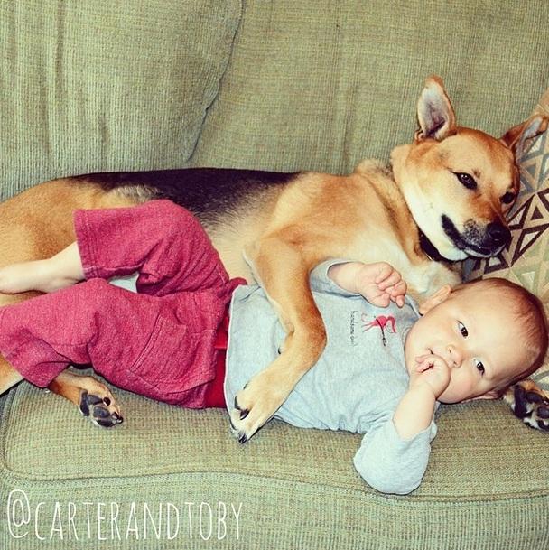 O menino Carter e o cachorro Toby são melhores amigos. (Foto: Reprodução / Instagram)