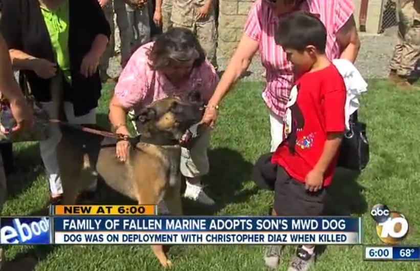 A família do sargento Christopher Diaz adotou seu companheiro canino, Dino. (Foto: Reprodução / The Indy Channel)