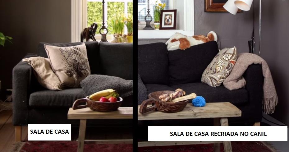 Sala da casa da família (à esquerda) e sala recriada no canil (à direita). (Foto: Reprodução / Youtube)