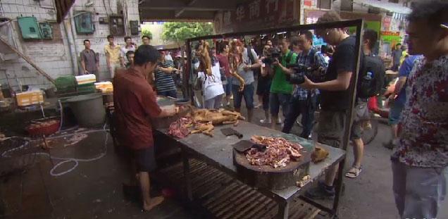 Carne canina no festival. Foto: Reprodução/CNN