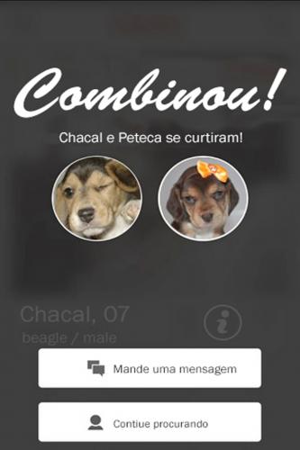 Se dois cachorros se gostarem, o app vai avisar. (Foto: Divulgação)